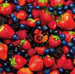STRAWBERRY TIMES (Berry Best of HiGE)